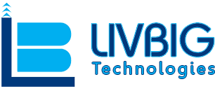 Livbig Technologies Pvt Ltd